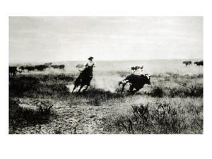 Cowboy on Horseback Lassooing a Calf by L.a. Huffman