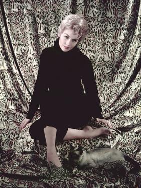 L'Adorable Voisine BELL BOOK AND CANDLE by RichardQuine with Kim Novak, 1958 (photo)