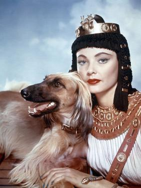 L'egyptien (THE EGYPTIAN) by Michael Curtiz with Gene Tierney, 1954 (photo)