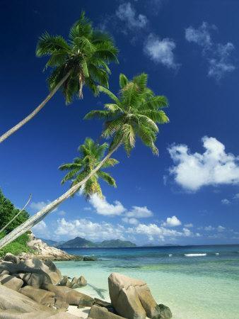 https://imgc.allpostersimages.com/img/posters/la-digue-with-praslin-island-in-background-anse-severe-seychelles-indian-ocean-africa_u-L-P7NFQ80.jpg?artPerspective=n