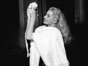 La Dolce Vita by FredericoFellini with Anita Ekberg, 1960 (Palmed'or, 1960) (b/w photo)