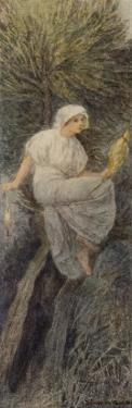 La Fee Des Saules the Willow Tree Fairy, a Flemish Entity