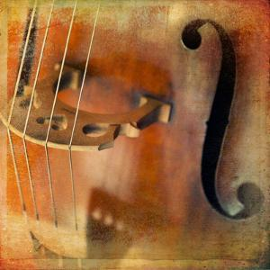 Double Bass by lachris77