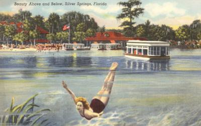 Lady Swimmer, Silver Springs, Florida