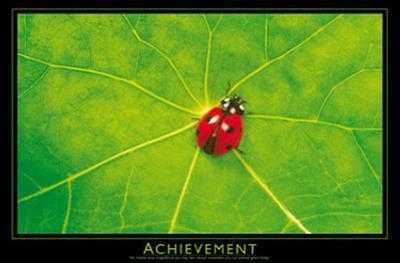 Ladybug (Achievement) Art Poster Print