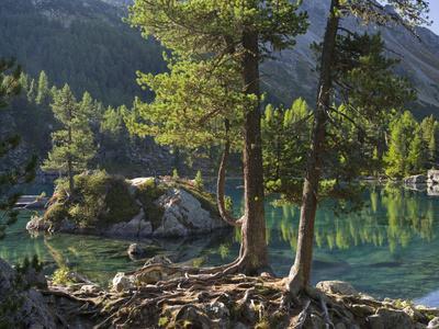 https://imgc.allpostersimages.com/img/posters/lago-di-saoseo-grisons-poschiavo-switzerland_u-L-Q1F2OV40.jpg?artPerspective=n