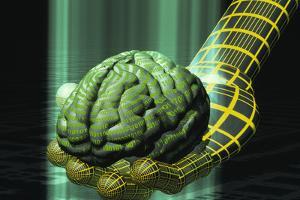 Digital Brain by Laguna Design