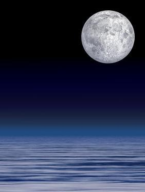 Moon Over Water by Laguna Design