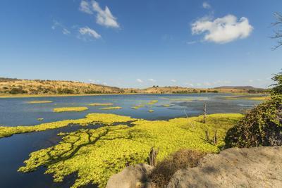 https://imgc.allpostersimages.com/img/posters/laguna-las-playitas-lake-by-the-panamerican-highway-between-matagalpa-and-managua_u-L-PWFFY70.jpg?artPerspective=n