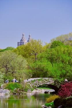 Lake in Central Park in Spring with Dakota Apartments in background, New York City, New York
