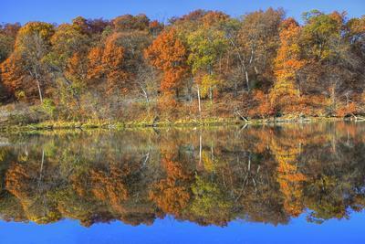 https://imgc.allpostersimages.com/img/posters/lake-jacomo-fall-colors-fleming-park-kansas-city-missouri-usa_u-L-PN6X0H0.jpg?artPerspective=n
