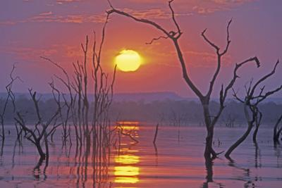 Lake Kariba Sunset over Drowned Trees
