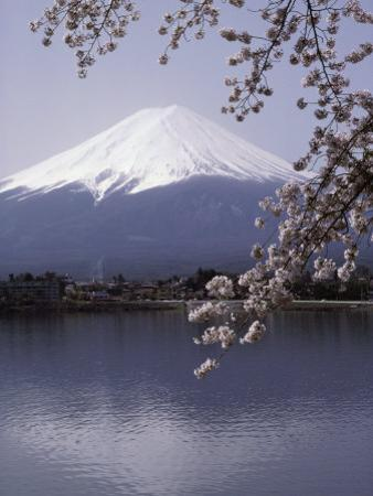 Lake Kawaguchi, Mount Fuji, Japan