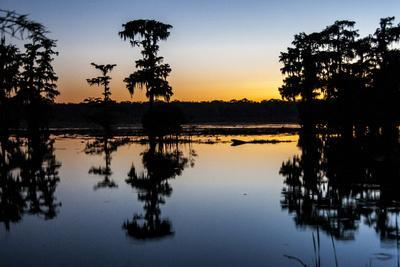https://imgc.allpostersimages.com/img/posters/lake-martin-at-sunset-with-bald-cypress-sihouette-louisiana-usa_u-L-PN6V3Q0.jpg?artPerspective=n