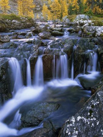 https://imgc.allpostersimages.com/img/posters/lake-o-hara-opabin-plateau-cascade-lakes-yoho-national-park-british-columbia-canada_u-L-PZLH5M0.jpg?p=0