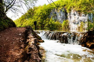 Beaten Track near A Forest Lake and Waterfall in Plitvice Lakes National Park, Croatia by Lamarinx