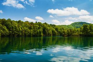 Forest and Clouds with Reflection in A Calm Lake by Lamarinx