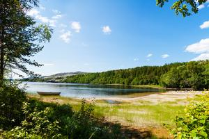 Panoramic View of A Lake with Boat from A Forest in Northern Norway by Lamarinx