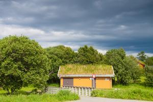 Scandinavian House with Grass Covered Roof by Lamarinx