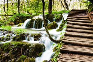 Wooden Track near A Forest Waterfall in Plitvice Lakes National Park, Croatia by Lamarinx