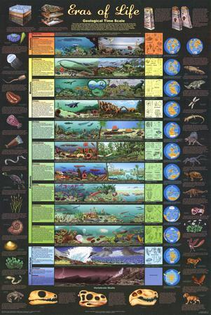 Laminated Eras of Life Geology Educational Science Chart Poster