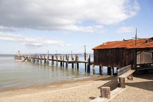 China Camp Pier by Lance Kuehne