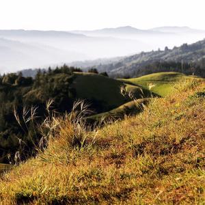Hilltop Vista by Lance Kuehne
