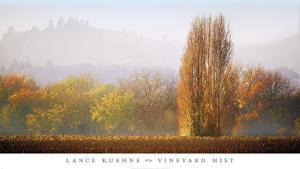 Vineyard Mist by Lance Kuehne