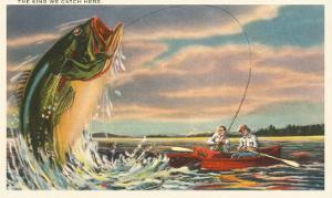 Landing Giant Fish
