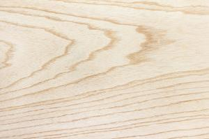 Swamp Ash Texture (Green Ash or Red Ash (Fraxinus Pennsylvanica )). Sought after Wood for Guitar Ma by landio