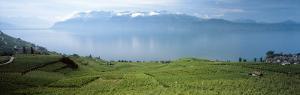 Landscape, Lake Geneva, Switzerland