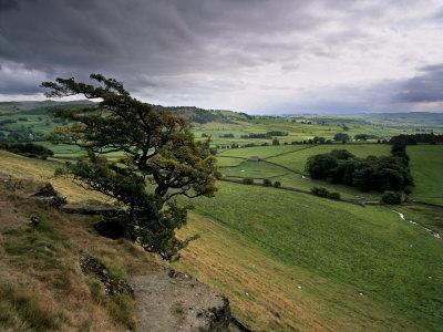 https://imgc.allpostersimages.com/img/posters/landscape-near-austwick-yorkshire-dales-national-park-yorkshire-england-united-kingdom-europe_u-L-P7MOM80.jpg?p=0