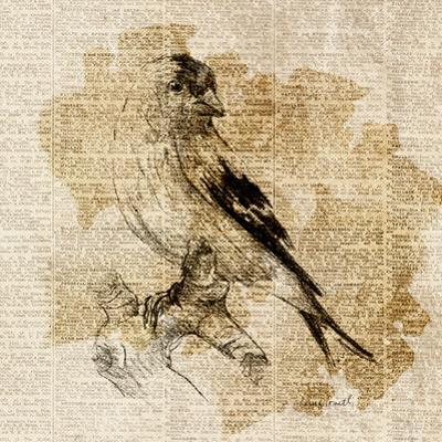 Bird Study III by Lanie Loreth