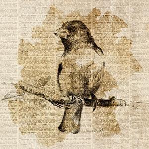 Bird Study IV by Lanie Loreth