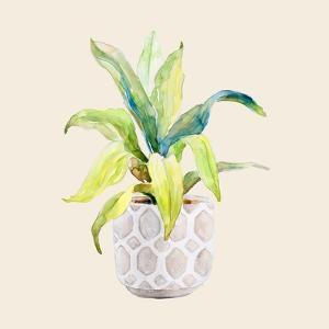 Decorative Potted Plant I by Lanie Loreth