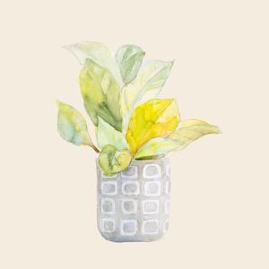 Decorative Potted Plant II by Lanie Loreth
