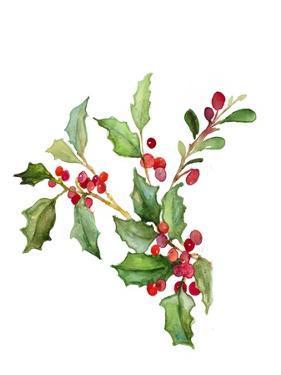 Holly Branches II by Lanie Loreth