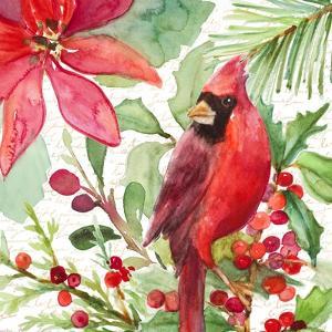 Poinsettia and Cardinal I by Lanie Loreth