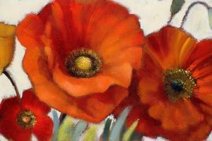 Poppy Splendor I by Lanie Loreth