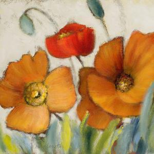 Poppy Splendor Square III by Lanie Loreth