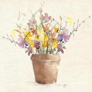 Potted Wildflowers I by Lanie Loreth