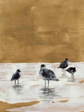 Seagulls Chillin' by Lanie Loreth