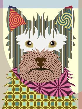 Australian Terrier by Lanre Adefioye