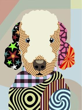 Bedlington Terrier by Lanre Adefioye