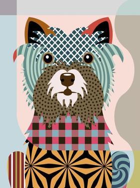 Cairn Terrier by Lanre Adefioye