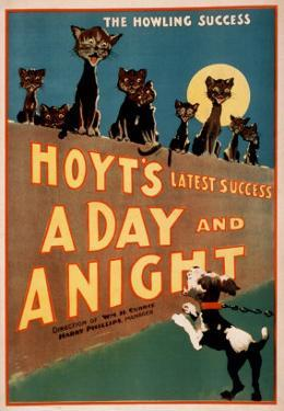 """""""A Day and a Night"""" Cats and Dogs Musical Poster by Lantern Press"""
