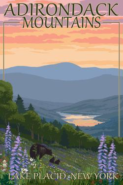 Adirondacks Mountains - Lake Placid, New York - Bears and Spring Flowers by Lantern Press