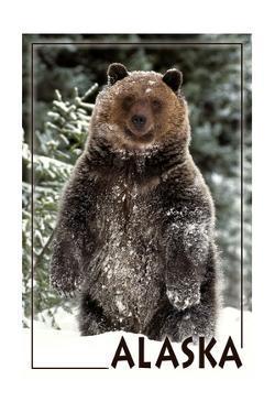 Alaska - Bear Standing in Snow by Lantern Press