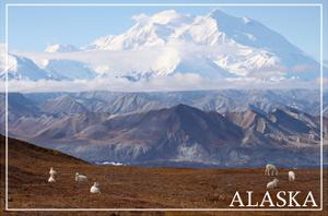 Alaska - Mt. McKinley and Goats by Lantern Press