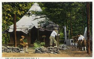 Allegany State Park, New York - Scenic View of a Family Camping in the Park by Lantern Press